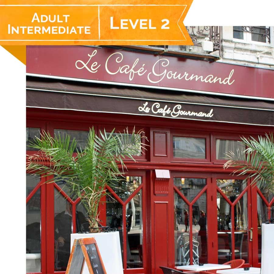 Intermediate French 204